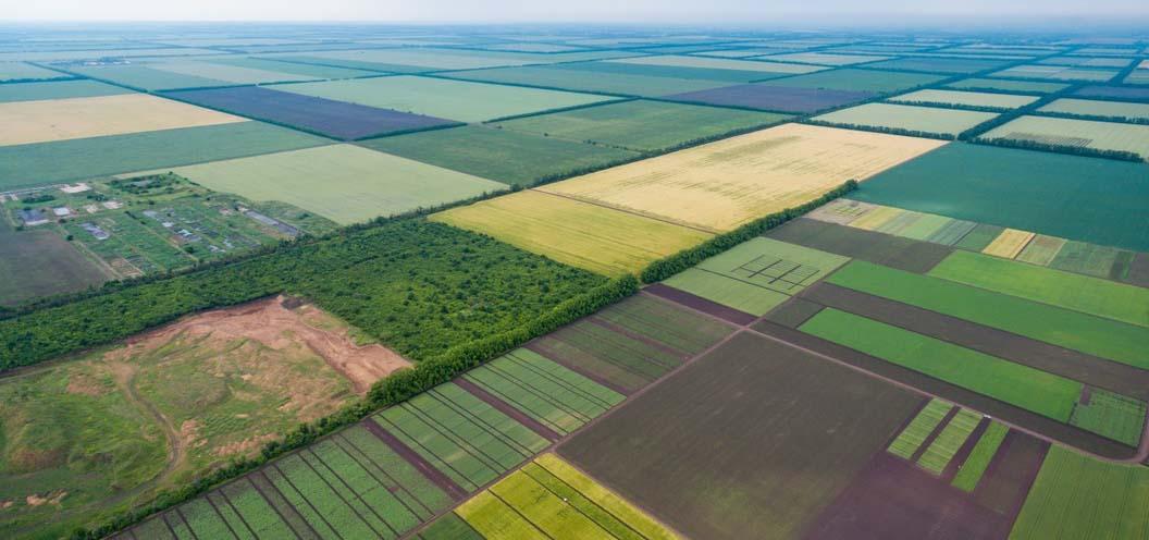 рынок земли в украине